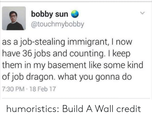 what you gonna do: bobby sun  @touchmybobby  as a job-stealing immigrant, I now  have 36 jobs and counting. I keep  them in my basement like some kind  of job dragon. what you gonna do  7:30 PM 18 Feb 17 humoristics: Build A Wall credit