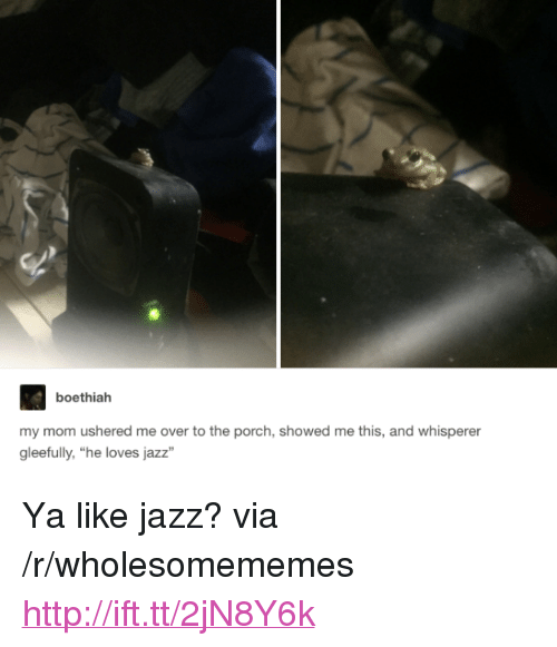 "Ya Like Jazz: boethiah  my mom ushered me over to the porch, showed me this, and whisperer  gleefully, ""he loves jazz"" <p>Ya like jazz? via /r/wholesomememes <a href=""http://ift.tt/2jN8Y6k"">http://ift.tt/2jN8Y6k</a></p>"
