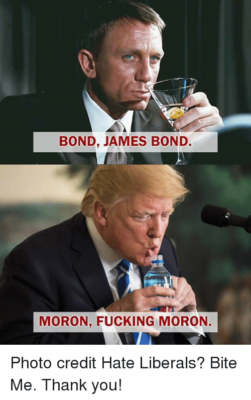 bond james bond: BOND, JAMES BOND  MORON, FUCKING MORON. Photo credit Hate Liberals? Bite Me. Thank you!