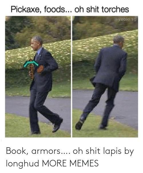 Book: Book, armors…. oh shit lapis by longhud MORE MEMES