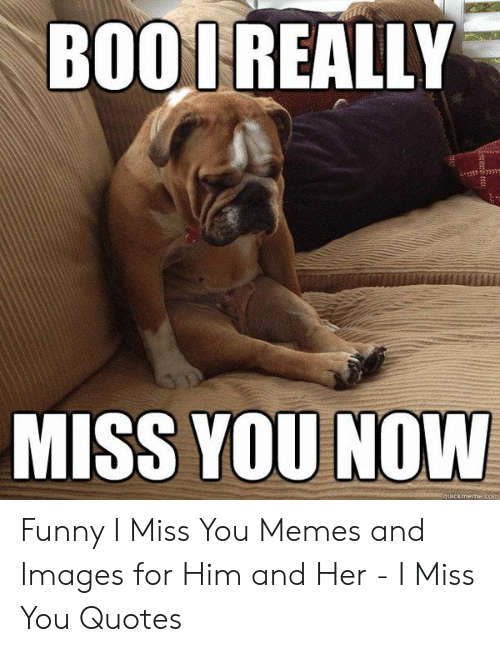 BOOL REALLY MISS YOU NOW Quickmemeco Funny I Miss You Memes