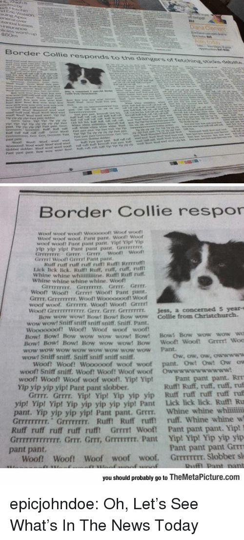 Border Collie: Border Collie responds to the dangers ot tetehine ssoees, debatn.  Border Collie respor  Woof  woot wooft Woooopoft Woof woott  Woof woot  woof. Pant pant. Woof! Woof  woof wooft Pant pant pant Vip! Yipt Vp  yip yip yipt Pant pant pant. Grrevrss  GFFEFETFY Grrr Grrr woof! Woot  Grrrrt Wooll Gerrrt Pant pant  Kuff rurt ruff ruff ru Rufmt Rrrrruf  Lick lick lick. Rulft Ruff, ruff, ruff, rufl  Whine whine whinimine. Rafft Ruff ruff.  Whine whine whine whine. Woof  Grrrr.  『rrrrrrrr.  Grrrrrrrr,  Grrrr  Woont Woot Grrrrt Wooft Pant pant  Grrrt. GrrEFFIEIr. Wooft Wooooooof! Woof  woof woof. GrrFITE. Wooft Wooft Grrrrt  won Grrrrrrrrrrrr. Grrr, Grrr Grrrrrrrr.  Jess, a concerned S year-s  Bow wow wowt Bowt Bowt Bow wow Collie from Christchurch.  wow wowt Sniff sniff sniffT soiff. Sniff. Pant.  woof woof  Woooooooft Woof! Woof  Bow! Bow! Bow wow wow wow! Bow! Bows Bow wow wow wo  Bow! Bow! Bow! Bow wow wow! Bow Wooft  wow wow wow wow wow wow wow wow Pant  wow! Sniff sniff. Sniff sniff sniff sniff  Woof! Woof! Woooooof woof woof pant. Owt Owt Ow ow  woof? Sniff sniff. Woof! Woof! Woof woof  woof! woof! Woof woof woof!, Yip! Yip!  Yip yip yip yip! Pant pant slobber  Owwwwwwwwwww!  Pant pant pant. RrT  Ruff! Ruff, ruff, ruff, ruf  Grrrr. Grrrr. Yipt Yip! Yip yip yip Ruff ruff ruff ruff ruf  p! Vip! Yip yip yip yip yip! Pant Lick lick lick. Ruf Ru  pant. Yip yip yip yip! Pant pant. Grrrr. Whine whine whii  Grrrrrrrrr. Grrrrrrrr. Ruff! Ruff ruff ruff. Whine whine w  Ruff ruff ruff ruff rufft Grrrt Wooft Pant pant pant. Yip!  Grrrrrrrrrrrrr. Grrr. Grr, GrrrTIT. Pant Yip! Yip! Yip yip yip  Pant pant pant Grrm  Woof Woof! Woof woof woof. GrrmrEEr. Slobber sl  yip! Yi  pant pant.  you should probably go to TheMetaPicture.com epicjohndoe:  Oh, Let's See What's In The News Today