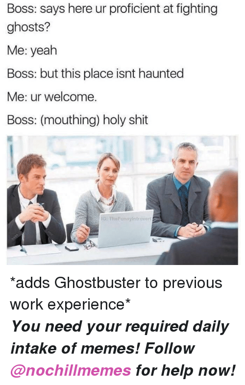 mouthing: Boss: says here ur proficient at fighting  ghosts?  Me: yeah  Boss: but this place isnt haunted  Me: ur welcome.  Boss: (mouthing) holy shit  G: FheFunnyintrovert <p>*adds Ghostbuster to previous work experience*</p><p><b><i>You need your required daily intake of memes! Follow <a>@nochillmemes</a> for help now!</i></b><br/></p>