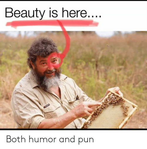 pun: Both humor and pun