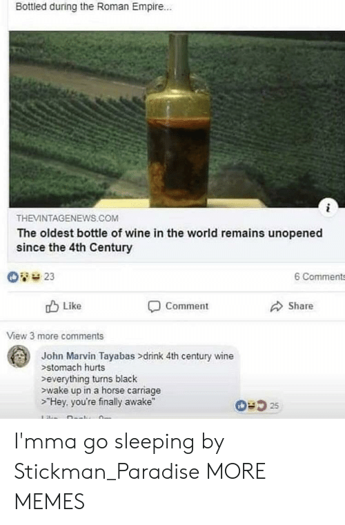 """Dank, Empire, and Memes: Bottled during the Roman Empire..  THEVINTAGENEWS.COM  The oldest bottle of wine in the world remains unopened  since the 4th Century  O23  6 Comments  Like  Share  Comment  View 3 more comments  John Marvin Tayabas >drink 4th century wine  stomach hurts  everything turns black  wake up in a horse carriage  >""""Hey, you're finally awake""""  0:525 I'mma go sleeping by Stickman_Paradise MORE MEMES"""