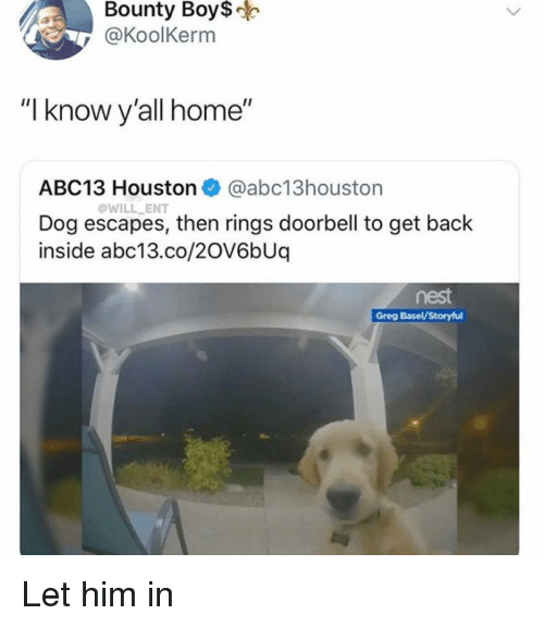 "Memes, Abc13, and Home: Bounty  Boy$  @KoolKerm  ""I know y'all home""  ABC13 Houston @abc13houston  Dog escapes, then rings doorbell to get back  inside abc13.co/2OV6bUq  @WILL ENT  nest  Greg Basel/Storyful Let him in"