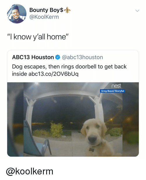 "Abc13, Home, and Houston: Bounty Boy$  @KoolKerm  ""I know y'all home""  ABC13 Houston @abc13houston  Dog escapes, then rings doorbell to get back  inside abc13.co/20V6bUq  nest  Greg Basel/Storyful @koolkerm"