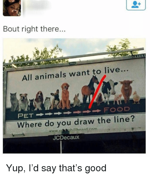 Animals, Dank, and Good: Bout right there...  All animals want to live...  Where do you draw the line?  JCDecaux Yup, I'd say that's good