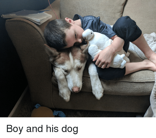 Boy, Dog, and And: Boy and his dog