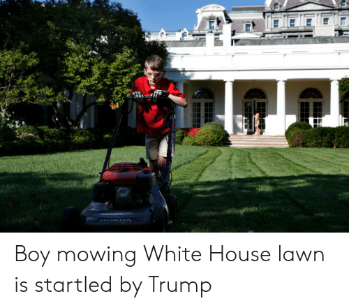 Boy Mowing White House Lawn Is Startled By Trump White