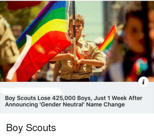 boy scouts: Boy Scouts Lose 425,000 Boys, Just 1 Week After  Announcing 'Gender Neutral' Name Change Boy Scouts