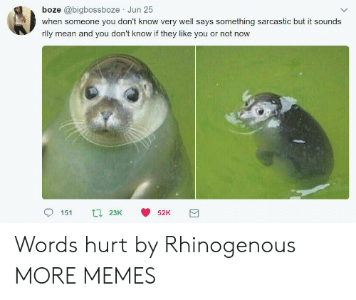 Dank, Memes, and Target: boze @bigbossboze Jun 25  when someone you don't know very well says something sarcastic but it sounds  rly mean and you don't know if they like you or not now Words hurt by Rhinogenous MORE MEMES