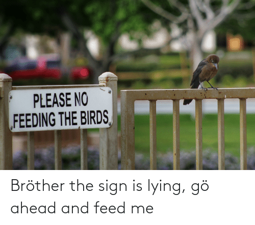 feed me: Bröther the sign is lying, gö ahead and feed me
