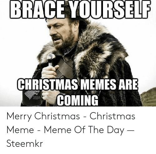 Christmas, Meme, and Memes: BRACE YOURSELF  CHRISTMAS MEMES ARE  COMING Merry Christmas - Christmas Meme - Meme Of The Day — Steemkr