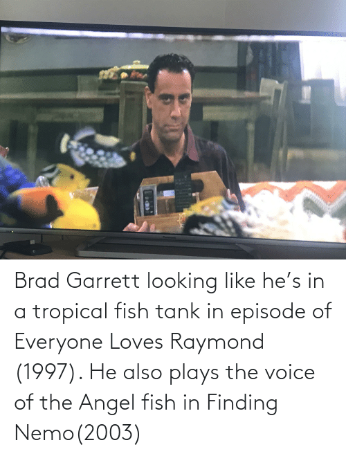 Brad: Brad Garrett looking like he's in a tropical fish tank in episode of Everyone Loves Raymond (1997). He also plays the voice of the Angel fish in Finding Nemo(2003)