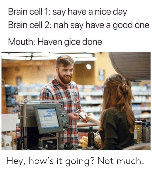 Good One: Brain cell 1: say have a nice day  Brain cell 2: nah say have a good one  Mouth: Haven gice done Hey, how's it going? Not much.