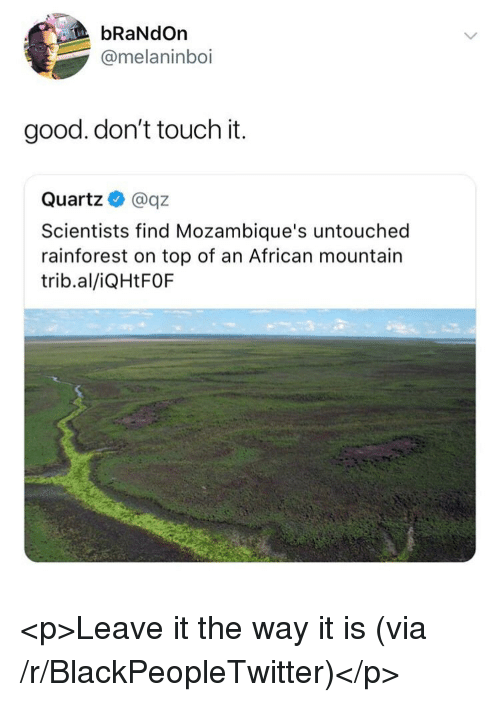 Blackpeopletwitter, Good, and Quartz: bRaNdOn  @melaninboi  good. don't touch it.  Quartz@qz  Scientists find Mozambique's untouched  rainforest on top of an African mountain  trib.al/iQHtFOF <p>Leave it the way it is (via /r/BlackPeopleTwitter)</p>