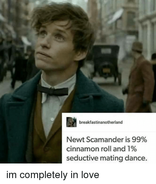 Seductively: breakfastinanotherland  Newt Scamander is 99%  cinnamon roll and 1%  seductive mating dance. im completely in love