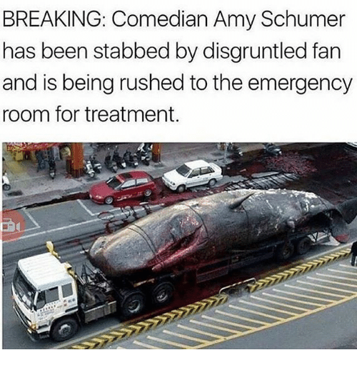 Amy Schumer, Dank Memes, and Been: BREAKING: Comedian Amy Schumer  has been stabbed by disgruntled fan  and is being rushed to the emergency  room for treatment.