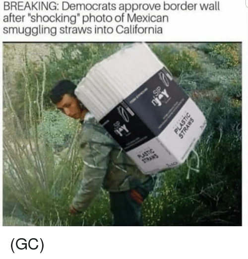 """Memes, California, and Mexican: BREAKING: Democrats approve border wall  after """"shocking"""" photo of Mexican  smuggling straws into California (GC)"""