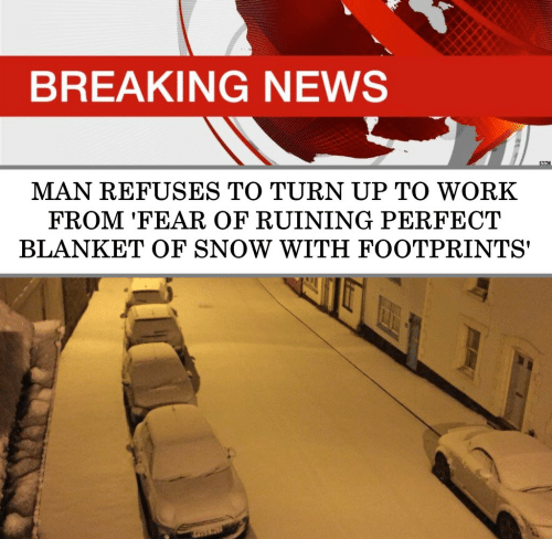 Turn up: BREAKING NEWS  BBC  MAN REFUSES TO TURN UP TO WORK  FROM 'FEAR OF RUINING PERFECT  BLANKET OF SNOW WITH FOOTPRINTS