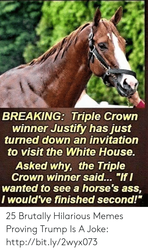 "White House: BREAKING: Triple Crowin  winner Justity has just  turned down an invitation  to visit the White House  Asked why, the Triple  Crown winner said... ""If I  wanted to see a horse's ass,  I would ve finished second!"" 25 Brutally Hilarious Memes Proving Trump Is A Joke: http://bit.ly/2wyx073"