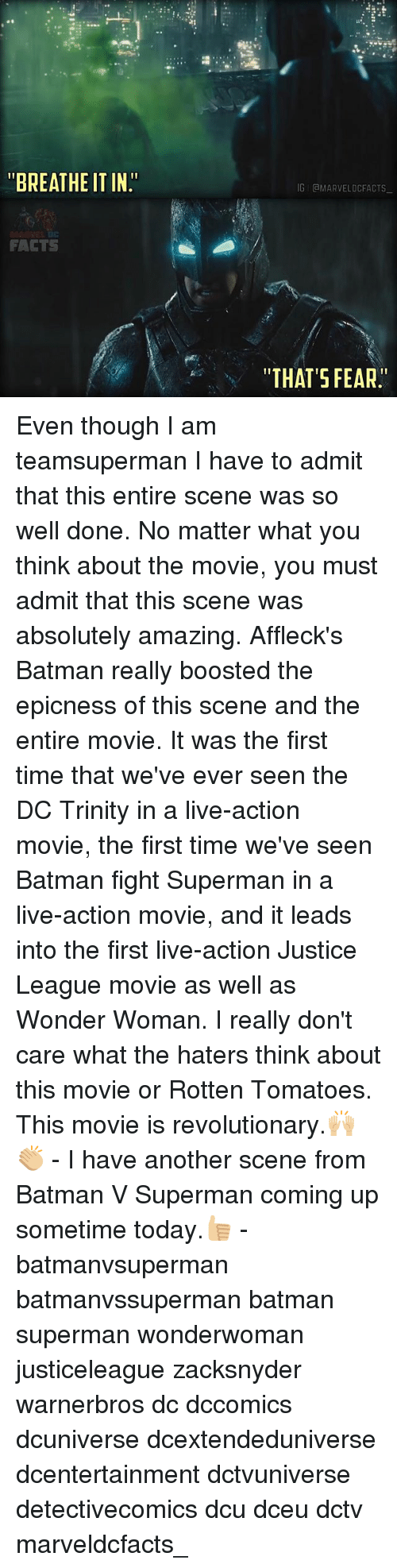 """Rotten Tomatoes: """"BREATHE ITIN""""  FACTS  IGIGMARVELDCFACTS  """"THAT'S FEAR. Even though I am teamsuperman I have to admit that this entire scene was so well done. No matter what you think about the movie, you must admit that this scene was absolutely amazing. Affleck's Batman really boosted the epicness of this scene and the entire movie. It was the first time that we've ever seen the DC Trinity in a live-action movie, the first time we've seen Batman fight Superman in a live-action movie, and it leads into the first live-action Justice League movie as well as Wonder Woman. I really don't care what the haters think about this movie or Rotten Tomatoes. This movie is revolutionary.🙌🏼👏🏼 - I have another scene from Batman V Superman coming up sometime today.👍🏼 - batmanvsuperman batmanvssuperman batman superman wonderwoman justiceleague zacksnyder warnerbros dc dccomics dcuniverse dcextendeduniverse dcentertainment dctvuniverse detectivecomics dcu dceu dctv marveldcfacts_"""
