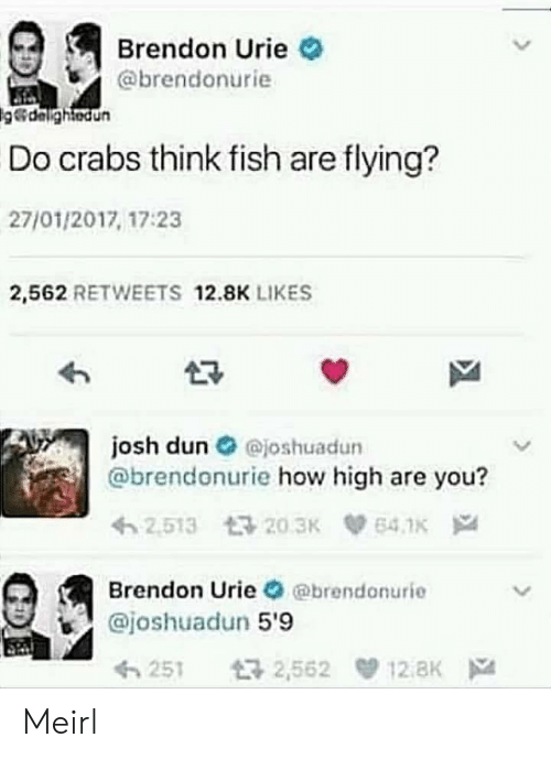 How High, Fish, and MeIRL: Brendon Urie  @brendonurie  delightedun  Do crabs think fish are flying?  27/01/2017, 17:23  2,562 RETWEETS 12.8K LIKES  josh dun O ejoshuadun  @brendonurie how high are you?  Brendon Urie @brendonurie  @joshuadun 5'9  251 2,562 12.8K Meirl
