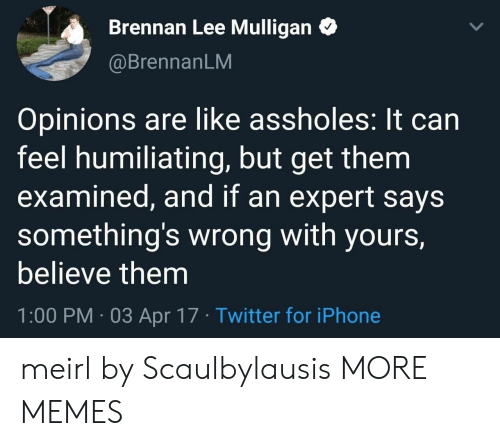 somethings wrong: Brennan Lee Mulligan  @BrennanLM  Opinions are like assholes: It can  feel humiliating, but get them  examined, and if an expert says  something's wrong with yours,  believe them  1:00 PM 03 Apr 17 Twitter for iPhone meirl by Scaulbylausis MORE MEMES