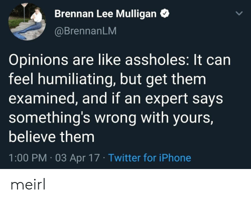 somethings wrong: Brennan Lee Mulligan  @BrennanLM  Opinions are like assholes: It can  feel humiliating, but get them  examined, and if an expert says  something's wrong with yours,  believe them  1:00 PM 03 Apr 17 Twitter for iPhone meirl