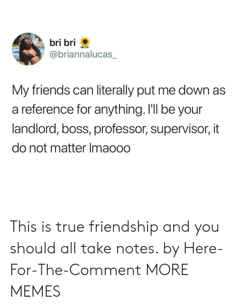 Dank, Friends, and Memes: bri bri  @briannalucas  My friends can literally put me down as  a reference for anything. I'll be your  landlord, boss, professor, supervisor, it  do not matter Imaooo This is true friendship and you should all take notes. by Here-For-The-Comment MORE MEMES