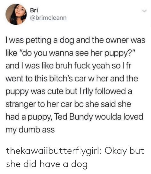"bruh: Bri  @brimcleann  I was petting a dog and the owner was  like ""do you wanna see her puppy?""  and I was like bruh fuck yeah so I fr  went to this bitch's car w her and the  puppy was cute but I rlly followed a  stranger to her car bc she said she  had a puppy, Ted Bundy woulda loved  my dumb ass thekawaiibutterflygirl:  Okay but she did have a dog"