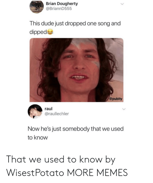Dank, Dude, and Memes: Brian Dougherty  @BriannD555  This dude just dropped one song and  dipped  @pubity  raul  @raullechler  Now he's just somebody that we used  to know That we used to know by WisestPotato MORE MEMES