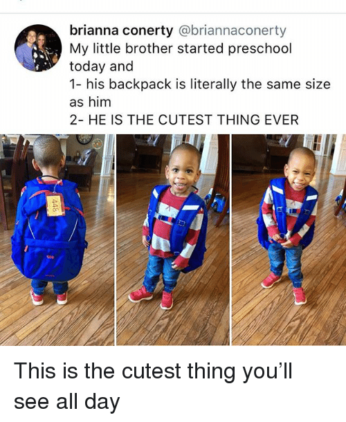 Memes, Today, and Little Brother: brianna conerty @briannaconerty  My little brother started preschool  today and  1- his backpack is literally the same size  as him  2- HE IS THE CUTEST THING EVER  on  Gio This is the cutest thing you'll see all day