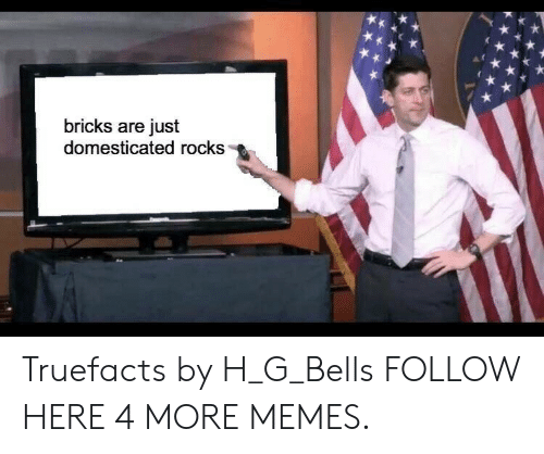 domesticated: bricks are just  domesticated rocks Truefacts by H_G_Bells FOLLOW HERE 4 MORE MEMES.