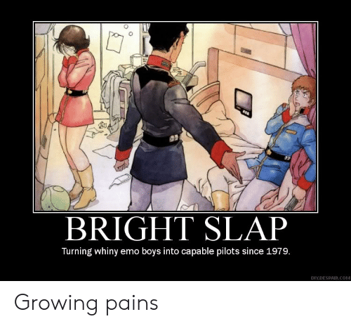 Pilots: BRIGHT SLAP  Turning whiny emo boys into capable pilots since 1979.  DIY.DESPAIR.COM Growing pains