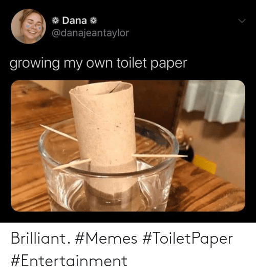 Brilliant: Brilliant. #Memes #ToiletPaper #Entertainment