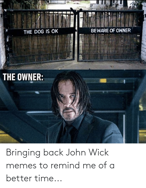 wick: Bringing back John Wick memes to remind me of a better time...