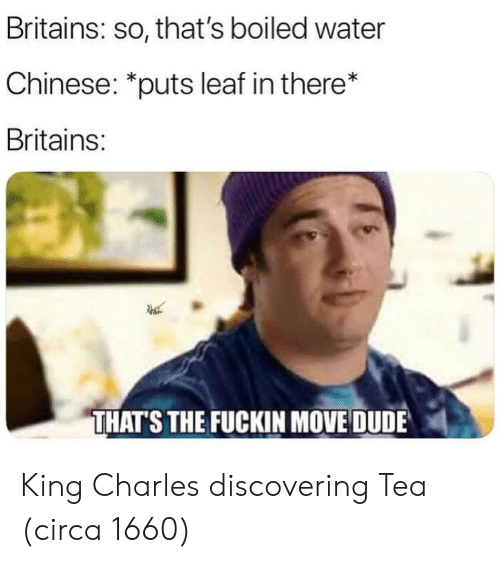 """Dude, Chinese, and Water: Britains: so, that's boiled water  Chinese: """"puts leaf in there*  Britains:  THATS THE FUCKIN MOVE DUDE King Charles discovering Tea (circa 1660)"""