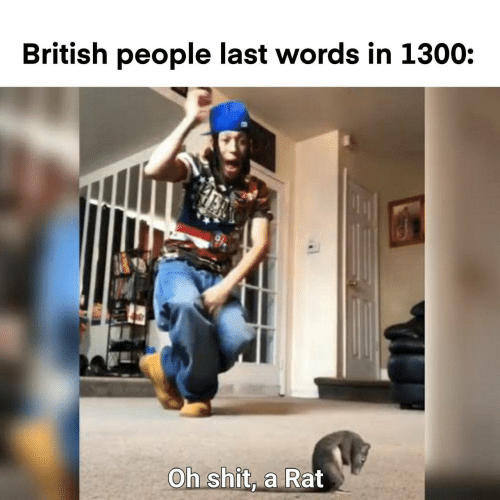 rat: British people last words in 1300:  Oh shit, a Rat