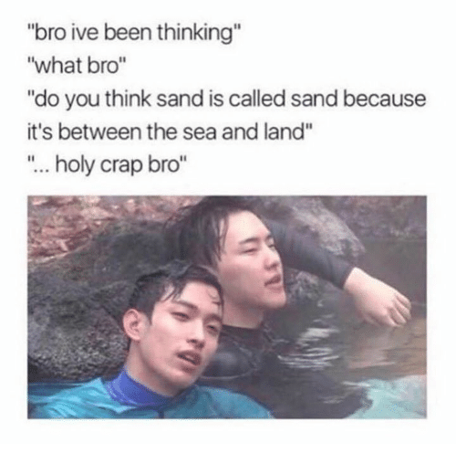 "Crapping: ""bro ive been thinking""  ""what bro""  ""do you think sand is called sand because  it's between the sea and land""  ""... holy crap bro"""