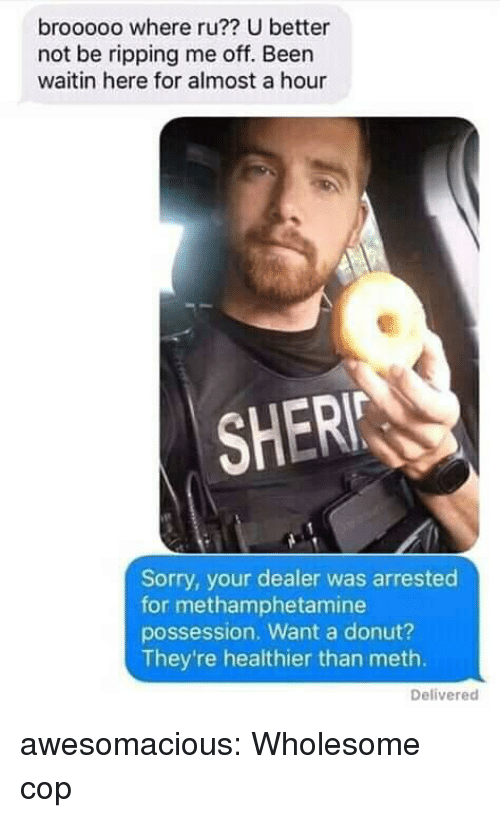 Sorry, Tumblr, and Blog: brooooo where ru?? U better  not be ripping me off. Been  waitin here for almost a hour  SHER  Sorry, your dealer was arrested  for methamphetamine  possession. Want a donut?  They're healthier than meth.  Delivered awesomacious:  Wholesome cop