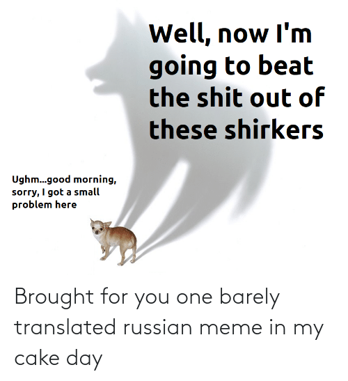 Russian Meme: Brought for you one barely translated russian meme in my cake day