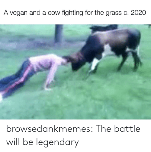 legendary: browsedankmemes:  The battle will be legendary