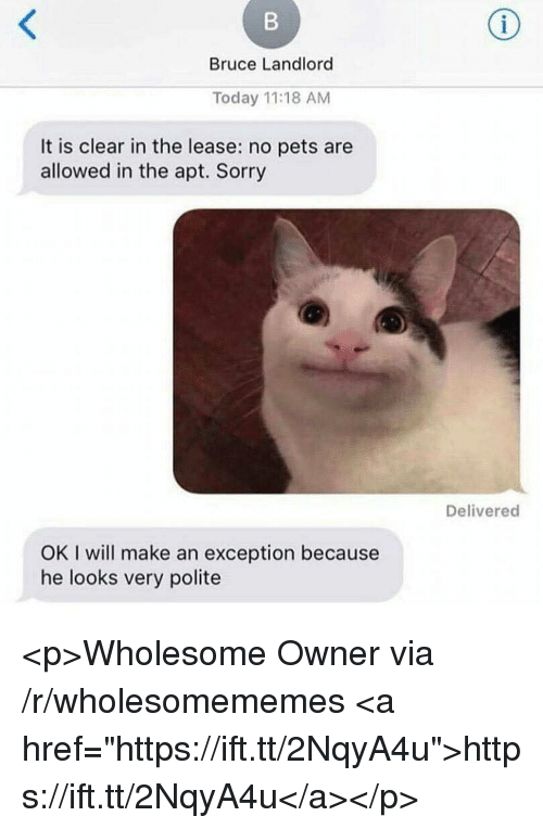 "Sorry, Pets, and Today: Bruce Landlord  Today 11:18 AM  It is clear in the lease: no pets are  allowed in the apt. Sorry  Delivered  OK I will make an exception because  he looks very polite <p>Wholesome Owner via /r/wholesomememes <a href=""https://ift.tt/2NqyA4u"">https://ift.tt/2NqyA4u</a></p>"