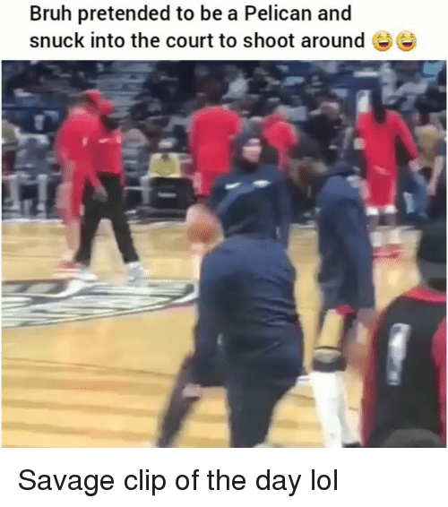 Bruh, Funny, and Lol: Bruh pretended to be a Pelican and  snuck into the court to shoot around Ee Savage clip of the day lol