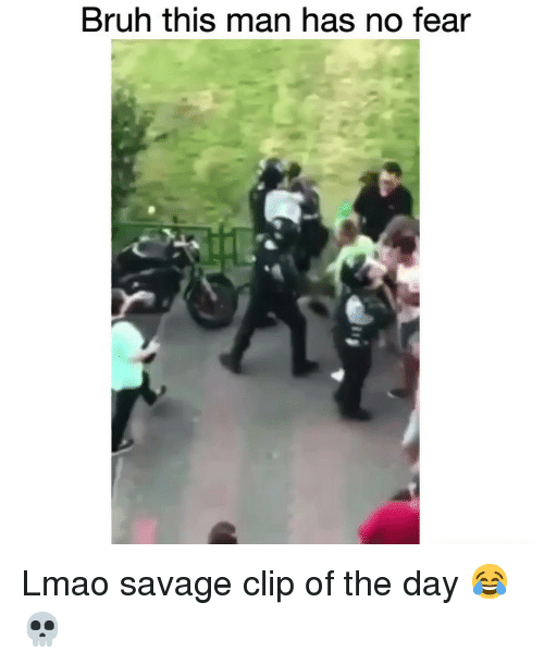 Bruh, Funny, and Lmao: Bruh this man has no fear Lmao savage clip of the day 😂💀
