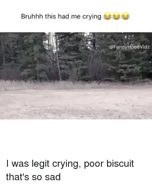 Legitly: Bruhhh this had me crying to  @FunnyHoodVidz I was legit crying, poor biscuit that's so sad