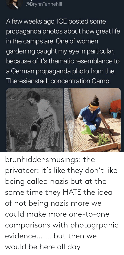 same: brunhiddensmusings:  the-privateer: it's like they don't like being called nazis but at the same time they HATE the idea of not being nazis more we could make more one-to-one comparisons with photogrpahic evidence… … but then we would be here all day