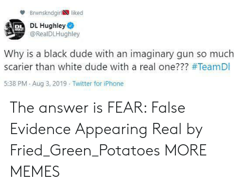 Dank, Dude, and Iphone: Brwnskndgirl liked  PL DL Hughley  @RealDLHughley  HHLEY  Why is a black dude with an imaginary gun so much  scarier than white dude with a real one??? #TeamDI  5:38 PM Aug 3, 2019 Twitter for iPhone The answer is FEAR: False Evidence Appearing Real by Fried_Green_Potatoes MORE MEMES